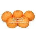 Spekbollen, Oranje